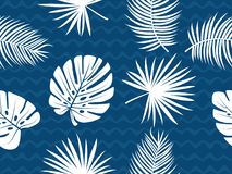 Palm and monstera leaf vector tropical theme seamless pattern. Template for wallpaper and background Royalty Free Stock Images