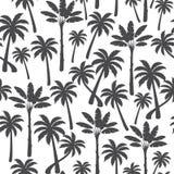 Palm naadloos patroon op een witte achtergrond Vector llustration royalty-vrije stock foto