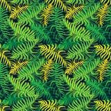 palm Naadloos patroon van tropische installatiebladeren royalty-vrije illustratie