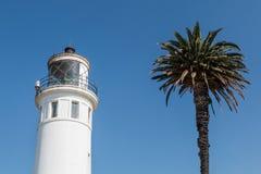 Palm naast Hoger Gedeelte van Punt Vicente Lighthouse in CA stock foto's