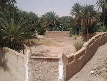 The Palm Oasis. In Ghadames, Libya is one of the oldest cities in the world and is under the auspices of UNESCO royalty free stock photography