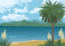 Palm on Ocean Beach, Flowers and Mountains Royalty Free Stock Photo