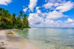 Palm Ocean Sky Stock Photography