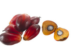 Palm oil. Fruit on white background Royalty Free Stock Image