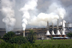 Palm Oil Factory Royalty Free Stock Image