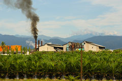 Palm oil factory, Sumatra Indonesia Royalty Free Stock Photography