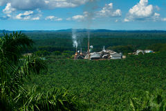 Palm Oil Mill Stock Image