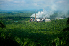 Palm Oil Mill Stock Photo