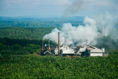 Palm Oil Mill Royalty Free Stock Photo