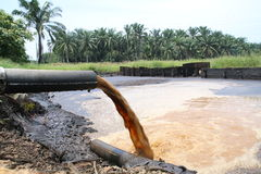 Palm Oil Mill Effluent (POME) wastewater being discharged Royalty Free Stock Image