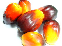 Palm oil seed Stock Photo