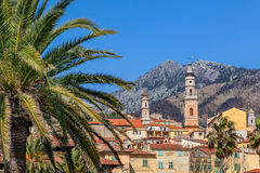 Palm and old town of Menton. Royalty Free Stock Photography