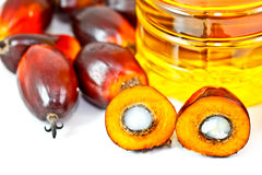 Palm olein oil with oil palm fruits Royalty Free Stock Image