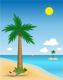 Palm op eiland Stock Afbeelding