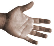 Palm-op Geïsoleerded Hand Royalty-vrije Stock Foto's