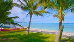 Palm op het strand || Mooi strand Mening van aardig tropisch strand met rond palmen Kustlijn, landschap in Hawaï 2019 stock foto