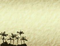 Palm paper Stock Photo