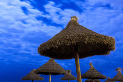 Palm parasols on moonlight beach. A bunch of palm parasols  on moonlight beach Stock Photos