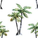 Palm pattern Royalty Free Stock Photo