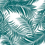 Palm pattern Royalty Free Stock Images