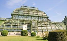 Palm pavilion. Schonbrunn, Vienna, Austria Royalty Free Stock Photography
