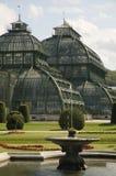 Palm Pavilion, Vienna stock photo