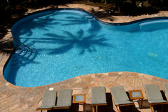 Palm Pool. The shadow of a palm tree falls onto a resort hotel's swimming pool royalty free stock photography