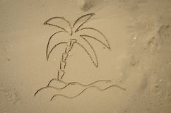 Palm in sand Royalty Free Stock Image