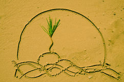 Palm in sand Royalty Free Stock Images