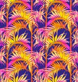 Palm Seamless Pattern. Tropical leaves backgrounds. Royalty Free Stock Images