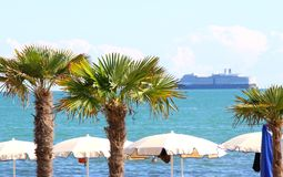 Palm in the seaside tourist village and the cruise ship Royalty Free Stock Photography