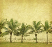 Palm with set of abstract painted Royalty Free Stock Images