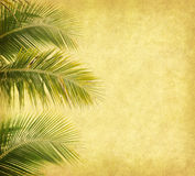 Palm with set of abstract painted Stock Photography