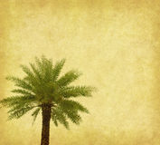 Palm with set of abstract painted Royalty Free Stock Photography