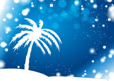 Palm Silhouette with Anomaly Winter Storm. Palm Silhouette on Anomaly Winter Storm Background Royalty Free Stock Images