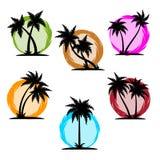 Palm silhouette color set Stock Photos