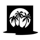Palm Royalty Free Stock Photo