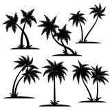 Palm silhouette set Stock Images