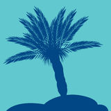 Palm silhouette Royalty Free Stock Photography