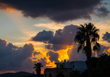 Palm silhouette under a cloudy sky at sunset Stock Photo
