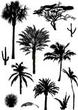 Palm silhouettes collection Stock Photos