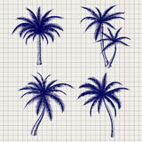 Palm sketches in ball pen style. Palm sketches in ball pen imitation style on notebook page. Vector illustration Stock Photo