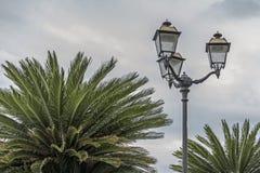 Palm splendor on the Riviera Stock Photo