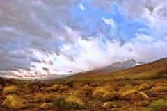 Palm Spring California Fotos de archivo libres de regalías