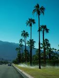 Palm Springs, California. Photo of sprinklers and palm trees in Palm Springs, California stock images
