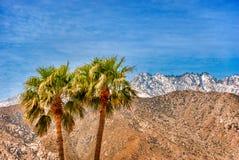Palm Springs en hiver photographie stock libre de droits