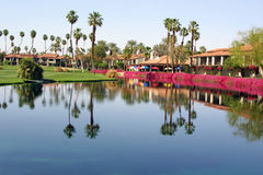 Palm Springs Oasis. Palm Springs resort palm trees reflect in lake stock photography