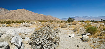 Palm Springs Panorama Royalty Free Stock Photography