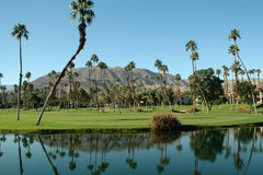 Palm Springs Resort. Golf Resort in Palm Springs stock photo