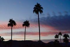 Palm Springssoluppgång royaltyfri fotografi